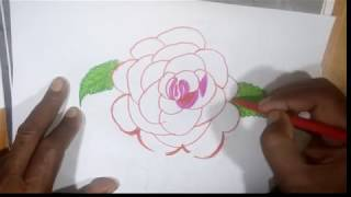 Easy  coloring  rose drawing | drawing for Kids