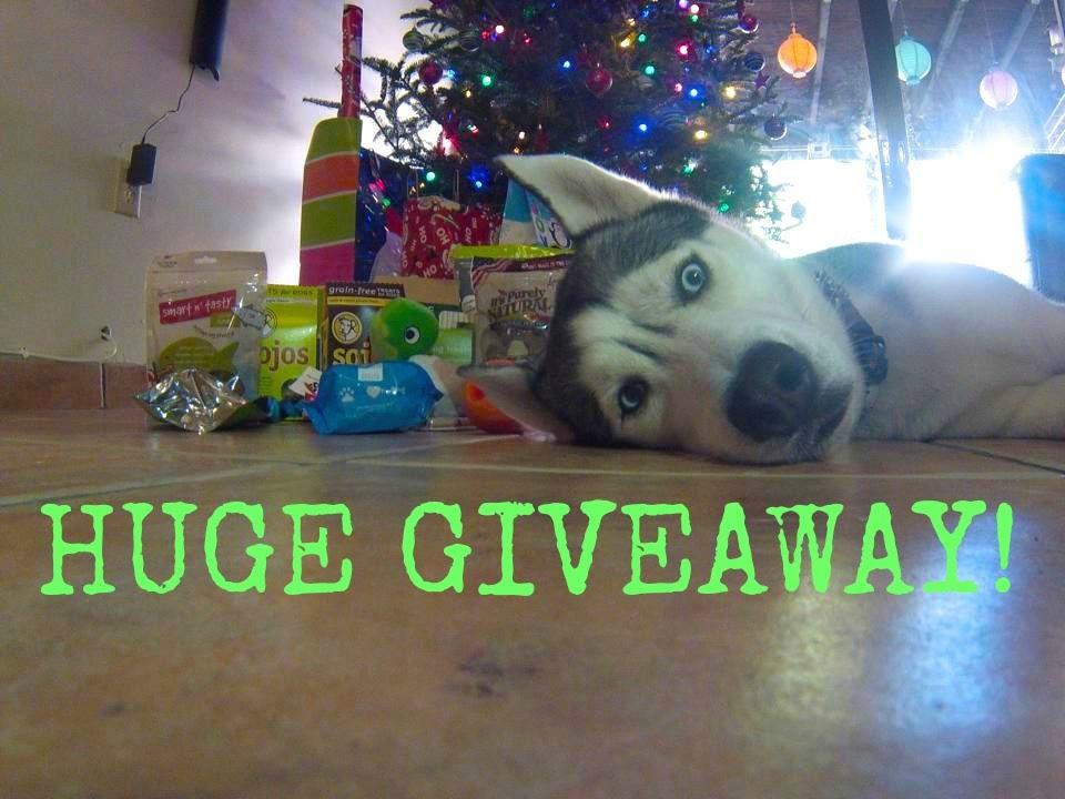 HUGE Christmas Giveaway! (5+ Winners!) ENDED!