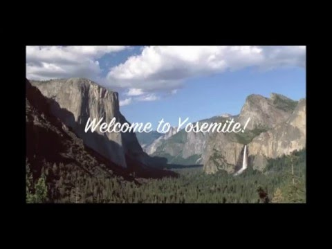 The Redwoods In Yosemite Vacation Home Rentals