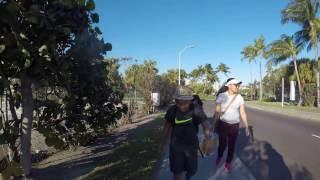 Strolling around Paradise Island Part 11