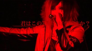 Shellmy - アリスインマゼントピア - LIVE CLIP
