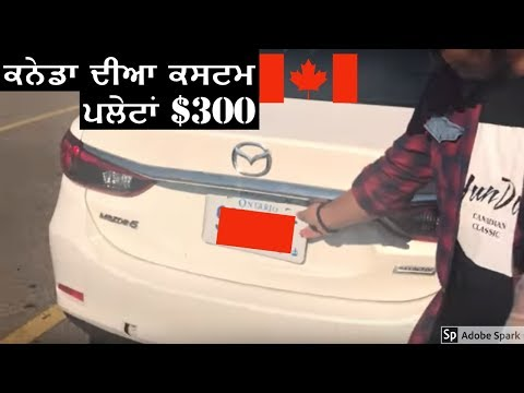 Punjabi Students Buying CUSTOM NUMBER PLATES In CANADA
