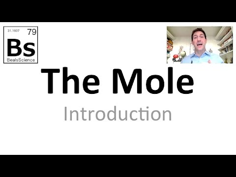 The Mole 1 -  Introduction To The Mole