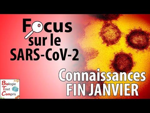 État des connaissances FIN JANVIER sur le coronavirus SARS-CoV-2 (responsable de la COVID-19) ?
