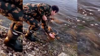 Река Ока ловля сома с берега 2017 год!!!