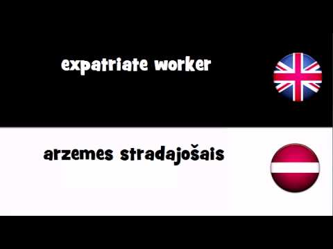SAY IT IN 20 LANGUAGES = expatriate worker