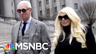 Roger Stone Threats To A Dog Could Put Him In Muellers Crosshairs | The Beat With Ari Melber | MSNBC