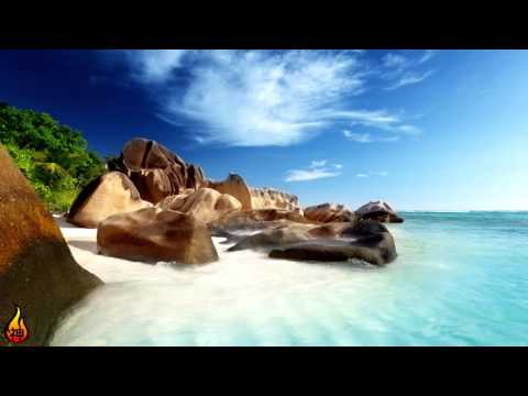 1 Hour Relaxing Tropical Music | Island Meditation | Island Music, Tropical, Instrumental ♫422