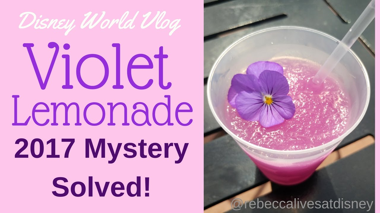 disney world vlog: violet lemonade 2017 missing flowers mystery