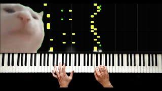 Edalıda Modalı Yar - Cat Vibing - #TikTok - Piano By VN
