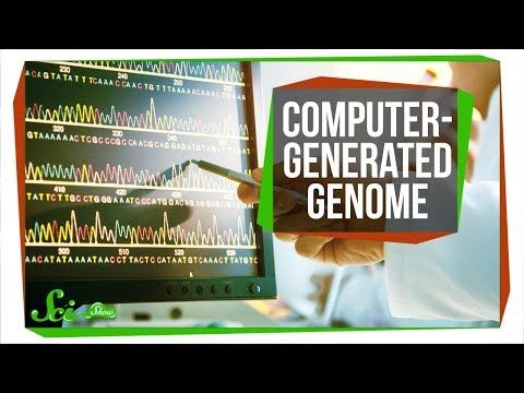 The First Computer-Generated Bacterial Genome   SciShow News