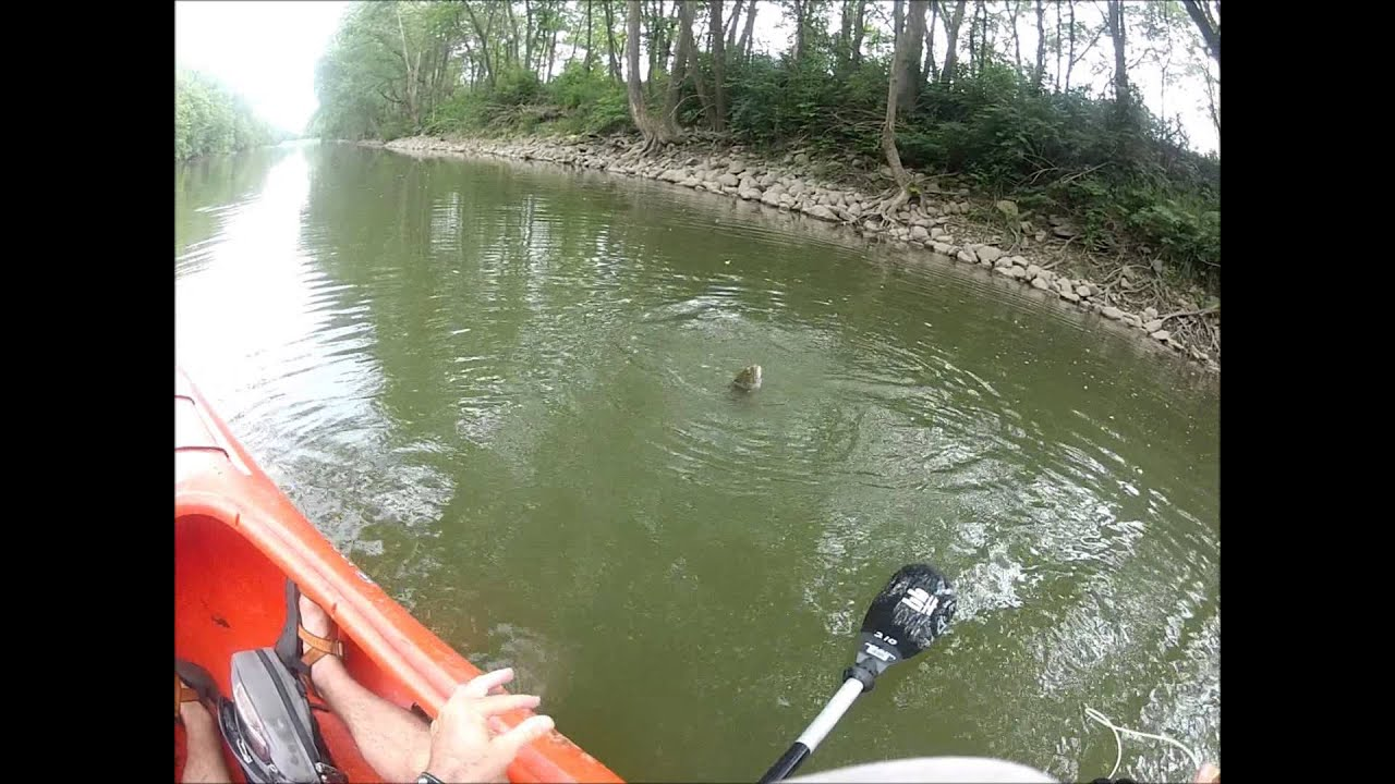 Kayak fly fishing for smallmouth bass youtube for Fly fishing for smallmouth bass
