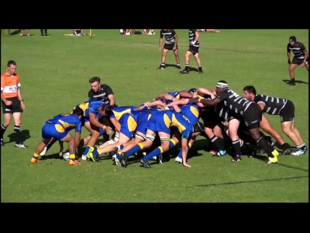 Pindan Premier Grade Tries of the Week - Round Two