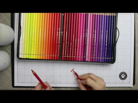 First Impressions | Faber Castell Polychromos Colored Pencils