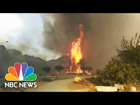 Homes Evacuated As Wildfire Threatens To Engulf Manavgat, Turkey