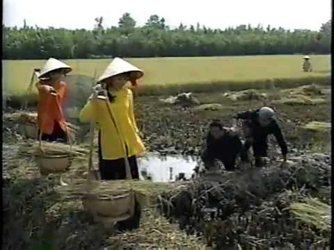 LK Nắng lên xóm nghèo trăng về thôn dã