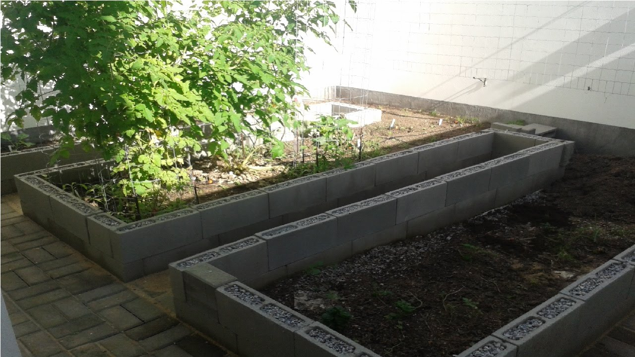 Building cinder blocks raised beds Timelapse YouTube