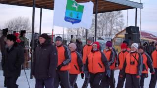 Снежные узоры в Молчанове. 2013