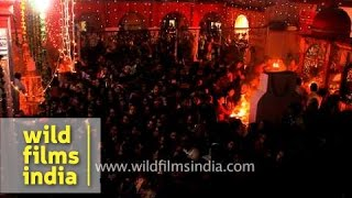 Thousands of devotees cluster at Kamleshwar Mahadev Temple