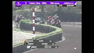 Vidéo de la course PMU PREMIO LADY FOX