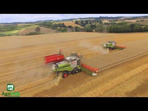 Hopkins Agriculture Wheat Harvest 2018 2x Claas Lexions 780TT