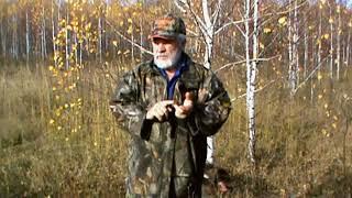 Как охотиться на вальдшнепа осенью в южной Мещёре