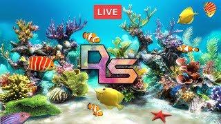 🔴Relaxing music fish tank live fish aquarium 24/7 study chill sleep music meditation support DLS