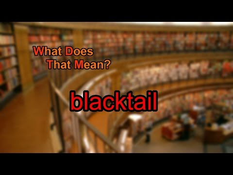 What does blacktail mean?