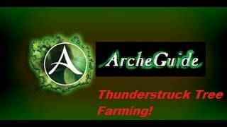 ArcheGuide: How to farm Thunderstruck Logs and Thunderstruck Trees in ArcheAge.
