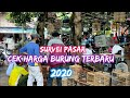 Cek Harga Burung Terbaru  Pasar Burung Gawok Sukoharjo Jawa Tengah  Mp3 - Mp4 Download