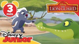 The Lion Guard | The Crocodiles! 🐊| Disney Junior UK