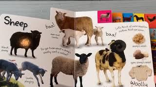 Книга мои первые домашние животные