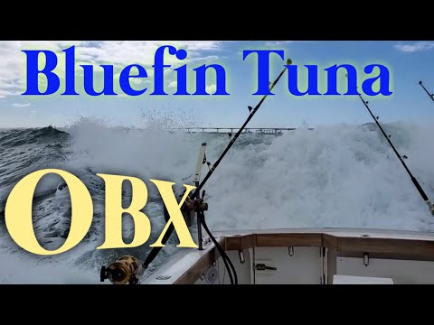 OBX Bluefin Tuna Commericial Fishing