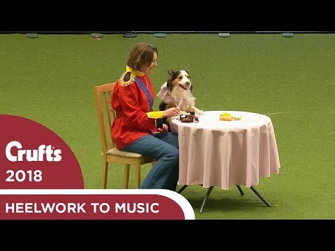 Heelwork to Music Competition Part 1 | Crufts 2018