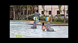 Klir Waterpark Resort