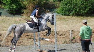 Horse Solution - Zoé passe sa pratique du Galop 3 : sauts d'obstacles et reprise de dressage.