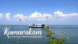 Romancing the Backwaters | Kumarakom Experience