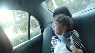 girls in the backseat singing