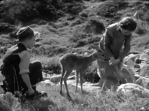 Film Heidi 1952 ( version officielle )