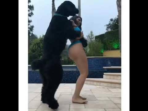 Modelo famosa no Instagram é acusada de abuso sexual contra cachorro