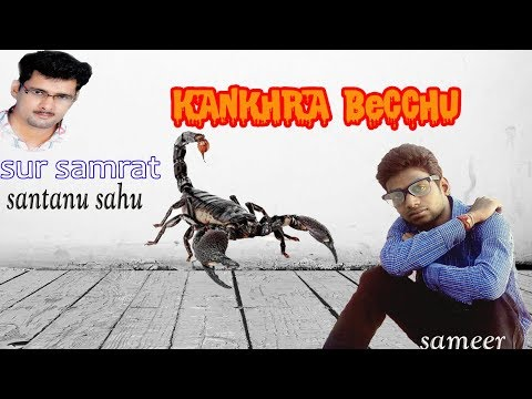 sambalpuri song kankhra bechhu santanu sahu old hit koshli odia album