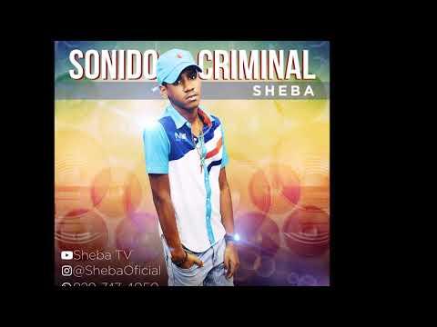 SHEBA- Sonido Criminal (Audio)