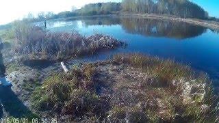 Рыбалка.Озеро в д.Алёшино(Московская обл.,Егорьевский район)
