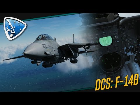 DCS World: Multicrew | F-14 Tomcat Multiplayer Gameplay
