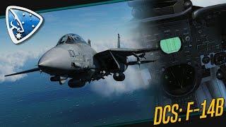 DCS World: Multicrew   F-14 Tomcat Multiplayer Gameplay