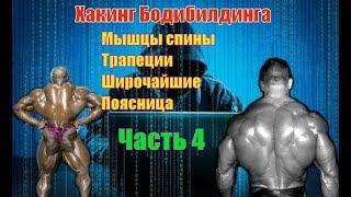 Как накачать мышцы спины. Лучшие упражнения. Техника. Часть 4. Хакинг Бодибилдинга