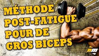 Faire grossir les biceps : méthode post-fatigue - entrainement des bras - par All musculation