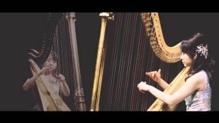 指にマメができず歌うような美しい音色をつくりだせる新しいハープ奏法...