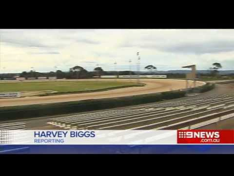 Harness Racing Battle | 9 News Adelaide