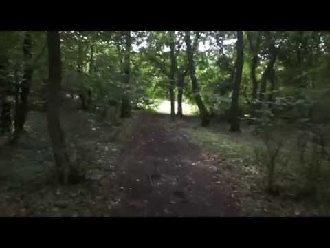 Hoia Baciu Forest - The Notorious Circle (26 July 2014)